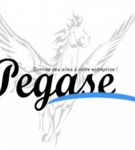 pegase97
